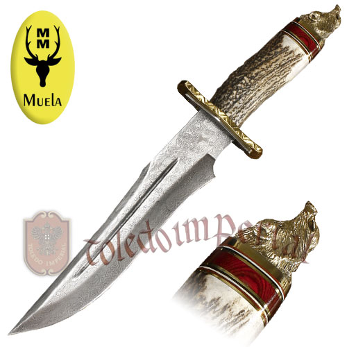 Knife with stag handle MAGNUM-23DAM.C