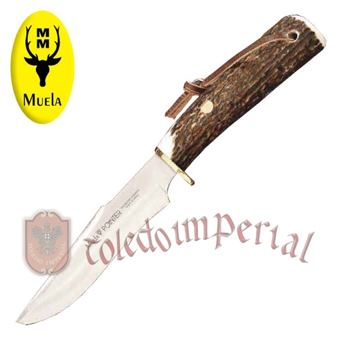 Hunting knive POINTER-13A