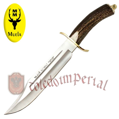 Stag handle Knife ALCARAZ-22