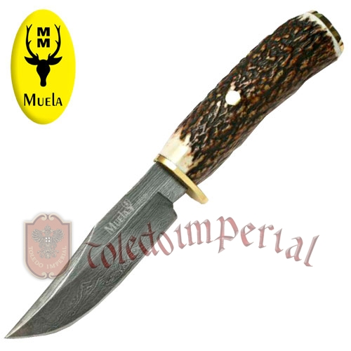 Knife with stag handle BRACO-11DAM