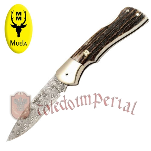 Folding knives with stag and nickel silver scales BX-8A.DAM